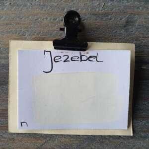 Weiße Wandfarbe | Jezebel