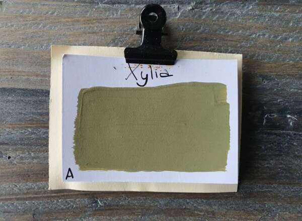 Xylia Kreidefarbe 125ML grüne Kreidefarbe