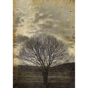 Sepia Tree Decoupage