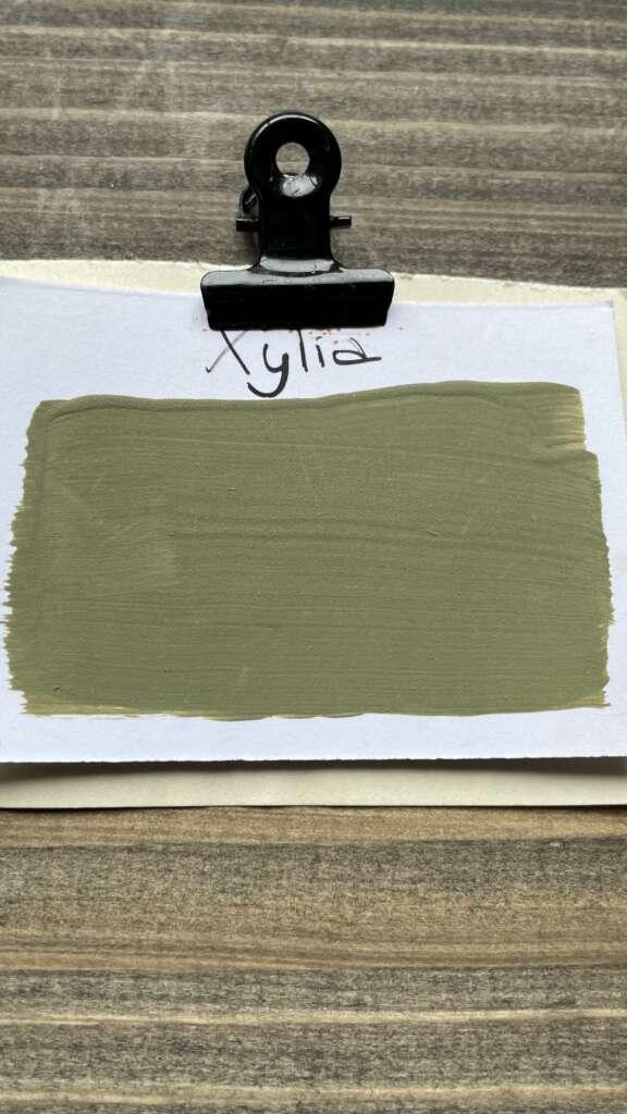 Grüne Kreidefarbe für Möbel von MaisonMansion