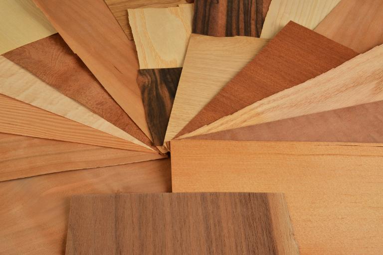 Holz-Furnier