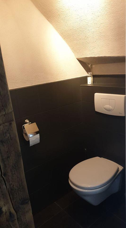 Graue Toilettefarbe